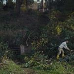 """რეცენზია სალომე ჯაშის დოკუმენტურ ფილმზე """"მოთვინიერება"""" (Taming the Garden, 2021)"""